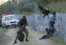 die Massenflucht der Syrer