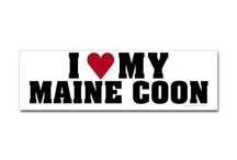 Mainecoon / by Heather Schiele