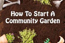 Gardening - Community Garden