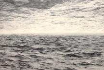 Seelandschaft