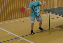 Stolný tenis / O stolnom tenise