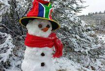 W Cape: Snow July 2014