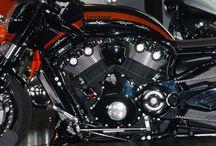 "V-Rod Harley ""Vipereum"" Designed by Vida Loca Choppers / V-Rod Harley Vipereum Designed by Vida Loca Choppers in 2007"