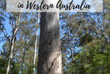 Australia / Tips, advice, and things to do during travel to Australia. Sydney | Melbourne | Brisbane | Great Barrier Reef | Tasmania | Great Ocean Road | Uluru | Whitsunday Islands | Sydney Opera House