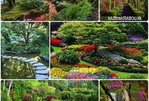 Zahrady,záhony