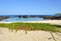 Big Island Wedding Locations