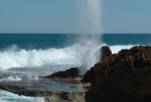 Quobba and the Blowholes / Located about 65km north of Carnarvon this area is popular for camping, fishing and sight seeing.
