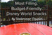 Disney Tips and Tricks