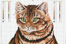 Kočky a koťata / Vyšívání