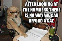 Haha funnies
