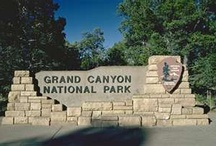 Travel: The Grand Canyon / by Cathy Garcia