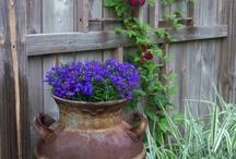 Garden Dreams / by Crystal Fultz