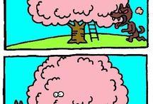 Funny / by Annalize Breytenbach
