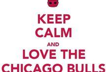 Chicago Bulls / Chicago Bulls / by 🏀Macy Eckert⚾️