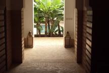 Marrakech  / Oasi di pace e bellezza!!