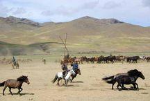 Randonnée à cheval en Mongolie / Voyages à cheval et randonnée équestre en Mongolie - http://www.rando-cheval-mongolie.com/randonnee-cheval-mongolie.html