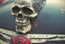 Skull obsession