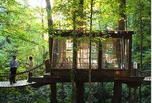 Treehouse inspirations / by Kim McDearmid-Chambless