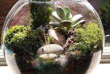Miniaturní zahrady