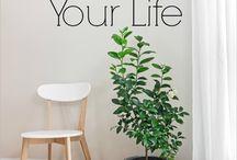 {Home} Simple Living / by Birgitta Bezuidenhoudt