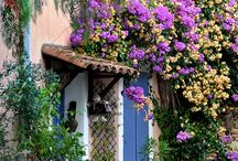Cute/beautiful houses/cottages