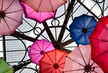Umbrellas! / Dreaming of raindrops... and sunshine! / by Karen Foley