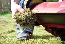 Gartenpflege Tipps