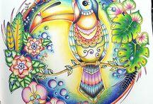 Magical jungle/toucan