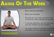 Aasna / Aasna Of the Week
