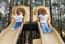 Park It! / Columbia area parks