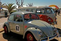 Rispo's Beetles