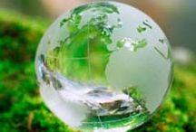 Austin Environmental Sciences