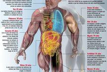 Cuerpo y salud