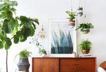 Mit Pflanzen wohnen