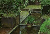 Trädgård-vattem