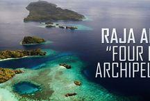 RAJA AMPAT / Let's visit raja ampat,papua,in Indonesia!