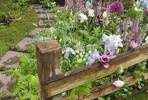 Meeting garden