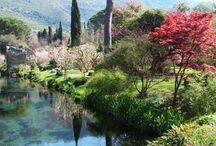 Giardino di Ninfa in Italy