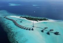 maldives honeymoon / Amazing destinations for your honeymoon in the Maldives / by Ever After Honeymoons