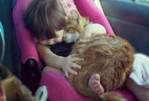 Cats + Humans