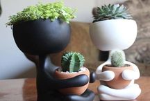 Wall & Small Planters