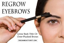 B r o w s / All About Brows