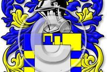 Coat of  Arms/ Family Crests / by Jannah