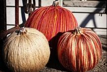 Fall/Thanksgiving / by Terri Chapman