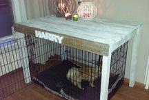 Palletbench / Pallettafel om hondenbench
