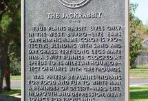 Twin Peaks clues