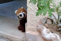 Ratou petit Panda Roux / Les aventures de Ratou petit panda roux