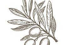 оливковая история