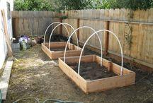 Garden Ideas... / by Sylvia Mundy- Posch