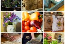 Our Blog / Random events, recipes and goings on at the Manna from Devon Cooking School - just click any image to go to our Blog for inspiration!